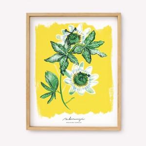 Pack x 3 Serigrafía Passiflora
